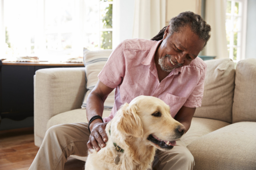 join-our-pet-therapy-sessions